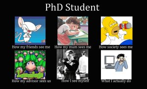 phd-student