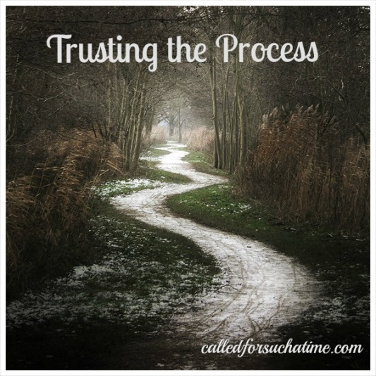Trusting-the-Pic